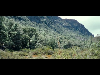 Охотник - 2011 - приключенческая драма - фильм Дэниэла Неттхейма